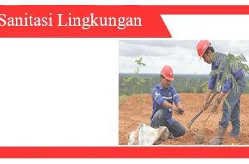 Kebersihan lingkungan: jenis, efektivitas, pemecahan masalah
